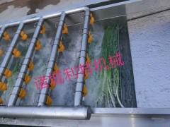 长条蔬菜粗加工长叶菜清洗机 气泡蔬菜清洗加工线