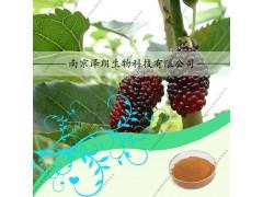桑叶提取物,ISO22000食品安全认证,固体饮料厂家