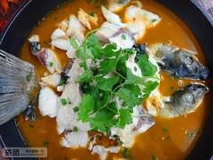 石锅鱼的做法,学做石锅鱼技术