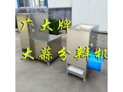 广大SPB-400型大蒜分瓣机 大蒜分瓣效率高 破损少