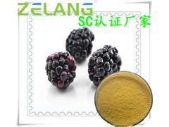 黑莓提取物,ISO22000食品安全认证