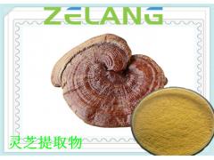 灵芝菌丝体提取物,灵芝多糖,10~30%