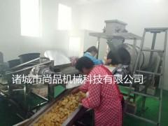 畅销机型-全自动油炸薯片加工设备 红薯片成套油炸流水线 尚品