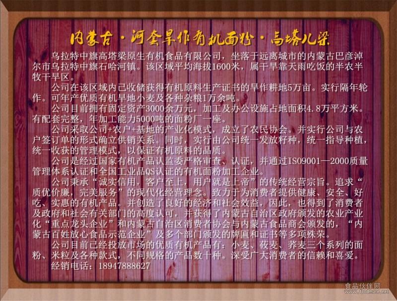 高塔梁简介网页模板定稿002
