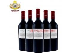雅云坊国际红酒汇进口红酒招商加盟代理卡帕雅经典款2009红葡