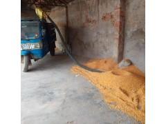 车载式玉米吸粮机 软管式绞龙提升机 晒场收谷机 粮食灌袋机