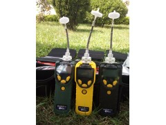 美国华瑞便携式气体检测仪声光报警PGM-7300voc