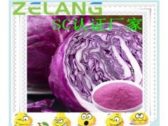 紫甘蓝浓缩粉,代加工水果蔬菜固体饮料