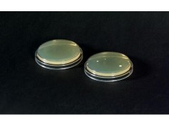 海康莱悦物表接触碟55mm、培养皿90mm