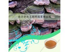 代加工云芝提取物,云芝多糖10~60%