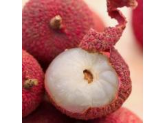 天然荔枝果粉 100% 全水溶果蔬粉