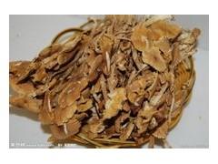 代加工茶树菇提取物,茶树菇多糖10~40%