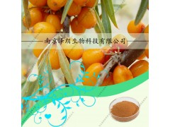 代加工沙棘提取物,40% UV,沙棘(醋柳)黄酮