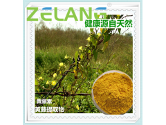 黄藤素98%Palmatine