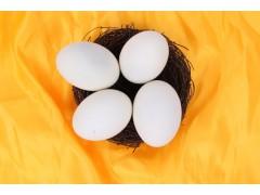 双黄蛋礼盒