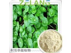 羟基积雪草酸madecassic acid1~98%