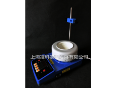 ZNCL-TS250ml数显磁力搅拌电热套