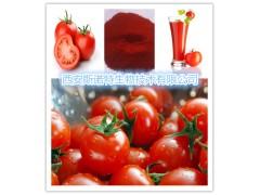 番茄粉 番茄速溶粉 免费试样 包邮