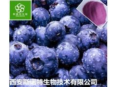 蓝莓速溶粉 水溶性蓝莓粉 库房现货 包邮