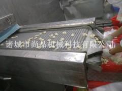 香酥裹糠虾自动裹面包糠机 公司配套油炸机生产