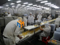 花枝丸裹屑机 鱼丸裹屑机 自动裹屑裹糠设备 尚品机械专业制造