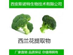 天然西兰花提取物 萝卜硫素10% 萝卜硫苷 包邮