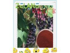 代加工葡萄汁、红酒提取物,10~30%,5%白藜芦醇