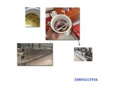 生产线 小型方便面生产线 方便面设备机械