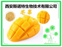 芒果速溶粉 水溶性果粉 现货包邮 送样品