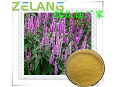 香薷提取物,SC认证厂家,代加工植物颗粒