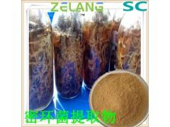 代加工蜜环菌提取物,蜜环菌浓缩粉,蜜环菌粉