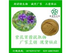 紫花苜蓿提取物 厂家直销