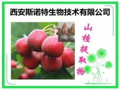 花椒籽提取物 精细粉末 斯诺特原料厂家 10:1