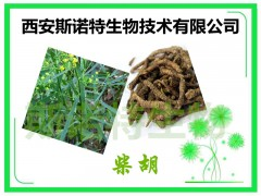 柴胡皂甙10% 柴胡提取物 斯诺特热销产品