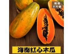红心木瓜新鲜水果现摘现发香甜冰糖木瓜红心青皮木瓜