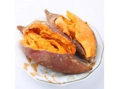 农家现挖新鲜红薯小香薯紫心番薯地瓜芋头香甜糯