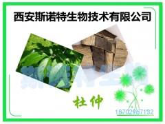 杜仲绿原酸 50% 杜仲提取物