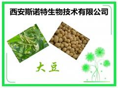 大豆提取物 20:1 大豆比例提取 天然植萃
