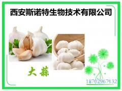大蒜提取物 大蒜素2% 大蒜粉 现货供应