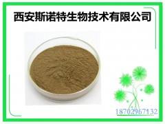 供应盐藻粉 β胡萝卜素5% sinuote包邮