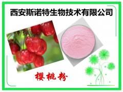 针叶樱桃提取物 10:1 斯诺特生物 包邮