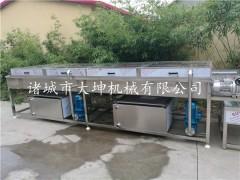 苹果清洗机,果蔬清洗设备