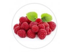 红树莓覆盆莓粉速溶水果粉固体饮料进口浓缩汁原料工厂生产现货
