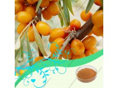 沙棘果油Sea buckthorn fruit oil