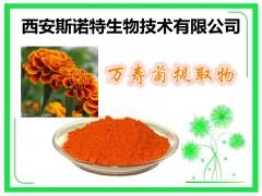 万寿菊提取物 叶黄素 20% sinuote供应