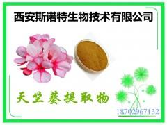 天竺葵提取物-洋绣球粉 10:1规格 包邮发货快
