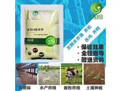 从厂家拿发酵床养蛇菌种价格是多少