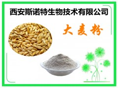大麦粉 大麦速溶粉 现货大麦芽粉 供应中