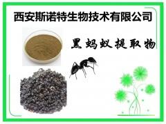 黑蚂蚁提取物 20:1 黑蚂蚁比例提取 供应中