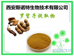 酸豆提取物 速溶粉 斯诺特生物 发货快